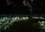 Fiber optic garden light 10-2