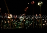 Fiber optic garden light 14