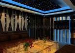 Karaoke star ceiling 2