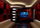 Karaoke star ceiling 8