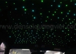 Starry car roof 12